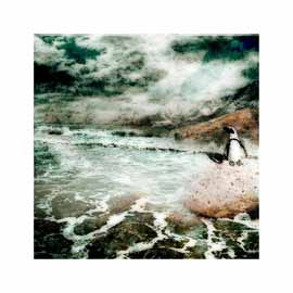 Nuances: Sea Breeze - Limited Edition Print by Janet Botes