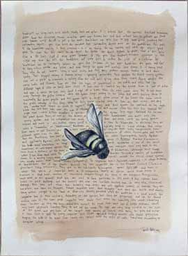 Xylocopa - Drawing by Janet Botes