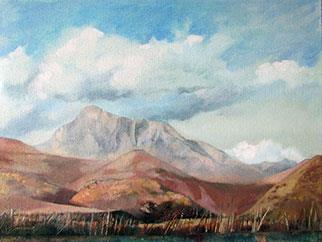 Summer Storm Over Compassberg - Painting by Joanne Reen