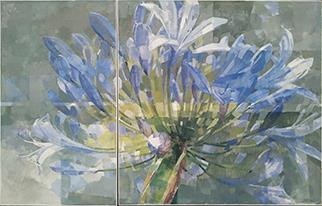Agapanthus (diptych) - Painting by Jeannie Kinsler