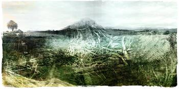 Entangled With The Garden Route  Ed.1/5 - Digital Collage by Janet Botes