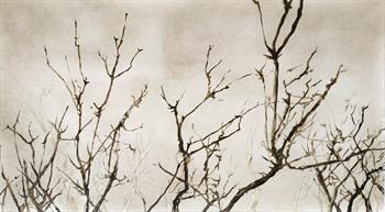 Windblown III - Handmade Print by Laurel Holmes