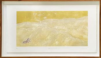 Topography Of Water I Ed.3/8 - Handmade Print by Laurel Holmes